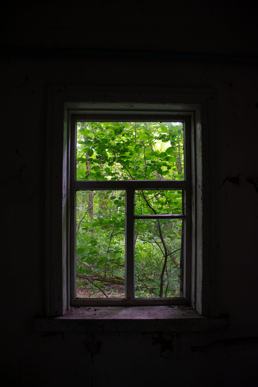 """<img src=""""window.png"""" alt=""""window with a view to the wilderness of chernobyl"""">"""