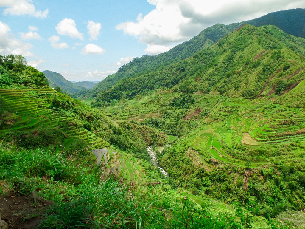 """<img src=""""rice terraces.gif"""" alt=""""rice terraces in the northen philippines"""">"""