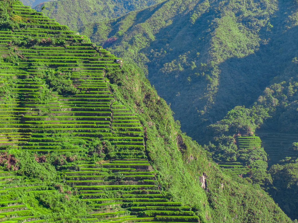 "<img src=""Batad rice terraces.gif"" alt=""Batad rice terraces at the northen philippines"">"
