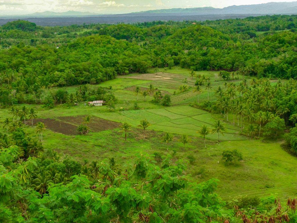 """<img src=""""rural landscape.gif"""" alt=""""rural landscape at the northen philippines"""">"""